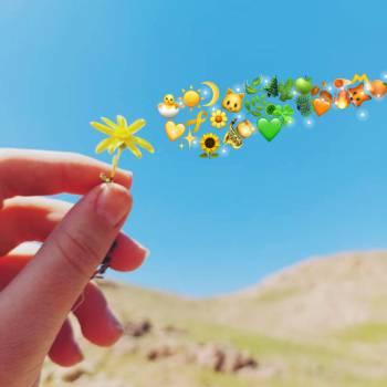 دنیا زیباست اگر بگذارند....